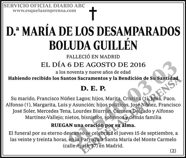 María de los Desamparados Boluda Guillén